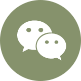 Wechat Online Inquiry Account ID  panda-eng(English)